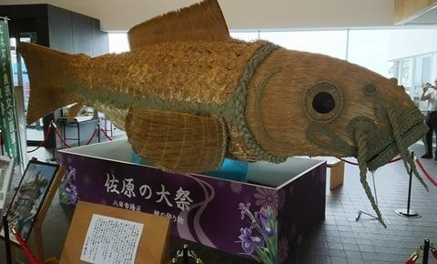ブログ用佐原大祭鯉の飾り02