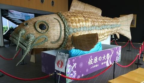ブログ用佐原大祭鯉の飾り01